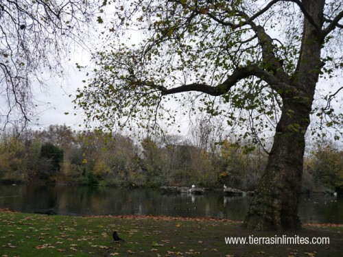 park_london_tierrasinlimites
