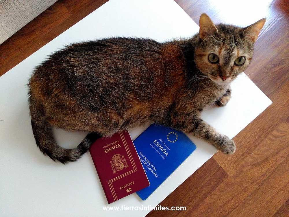 pasaporte europeo mascotas