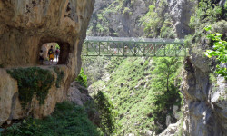 Puente Bolín